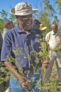 Dr. Wondi Mersie, the project director from Virginia State University, examines a parthenium flower.
